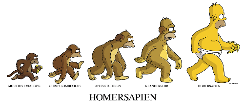 homer evolution
