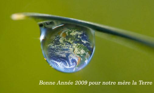 une année écologique