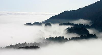 brouillard instantané