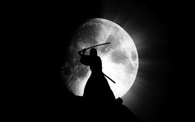 samourai vs ombres