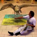 Peinture 3d à Dubai