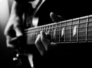 chien qui aime la guitare