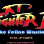 cat fighter