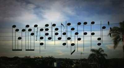 oiseaux en musique
