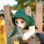 assassin's creed chatons